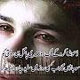M Ali Saab